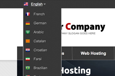 multi language support whmcs template