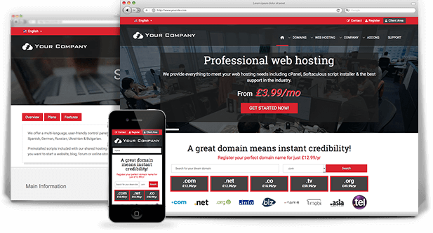 Premium Wordpress Theme Built For Web Hosting Provider Options - Website templates wordpress