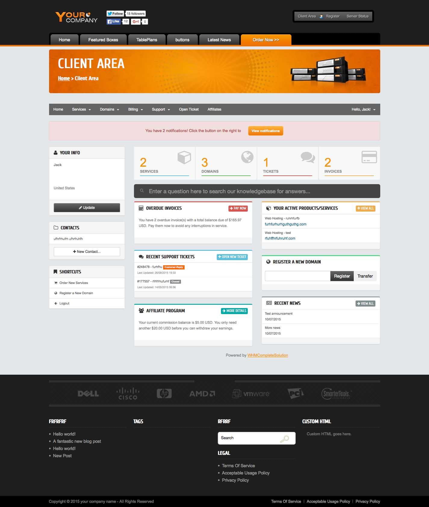 Premium Wordpress Theme built for web hosting provider | Options