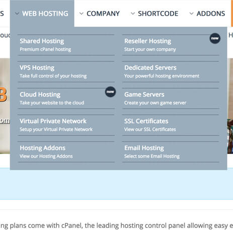 WordPress Theme menu options