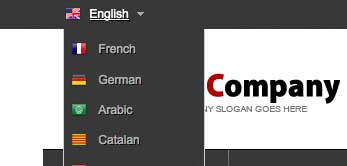 whmcs theme language dropdown with flags